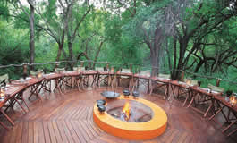 Jacis Tree Lodge Madikwe